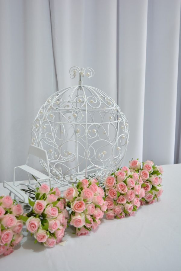 wishing-well-hire-cinderella-carriage-