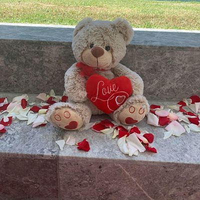 DIY Heart Rug Proposal Package 1 x Heart Shaped Rug 1 x 10cm High Light Up Marry Me Letters 1 x Bag of Petals Silk 30 x Battery Operated Tea Lights in Glass Votive 1 x Romeo Teddy Keepsake {Teddy may vary} This Proposal Package is part of our Melbourne Wedding Proposals business