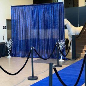 hire royal blue sequin backdrop